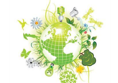 Subsanación voluntaria de incumplimiento de obligaciones ambientales