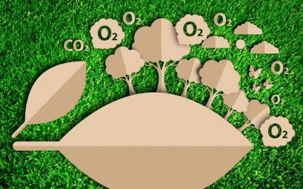 Estándares de Calidad Ambiental del aire en la actualidad industrial